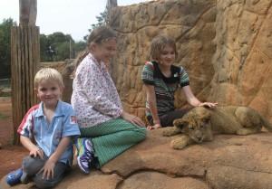 Lion Park, Johannesburg