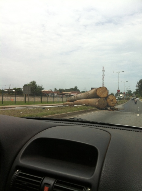 Logging truck unexpected unload. Pleased I wasn't there when it happened.