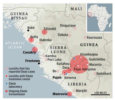 One version of the spread of Ebola
